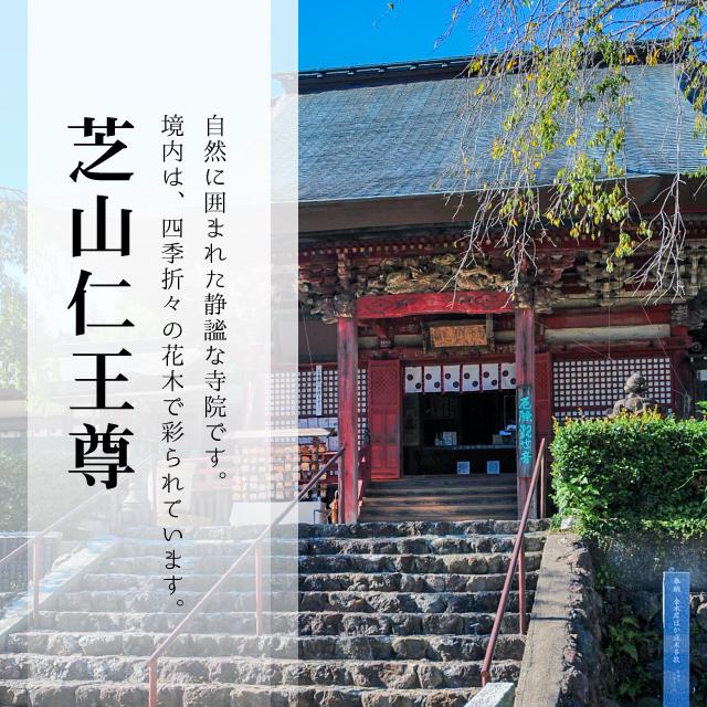 芝山仁王尊は自然に囲まれた静謐な寺院です。境内は、四季折々の花木で彩られています。